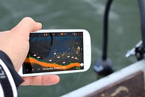 Fischfinder für das Smartphone